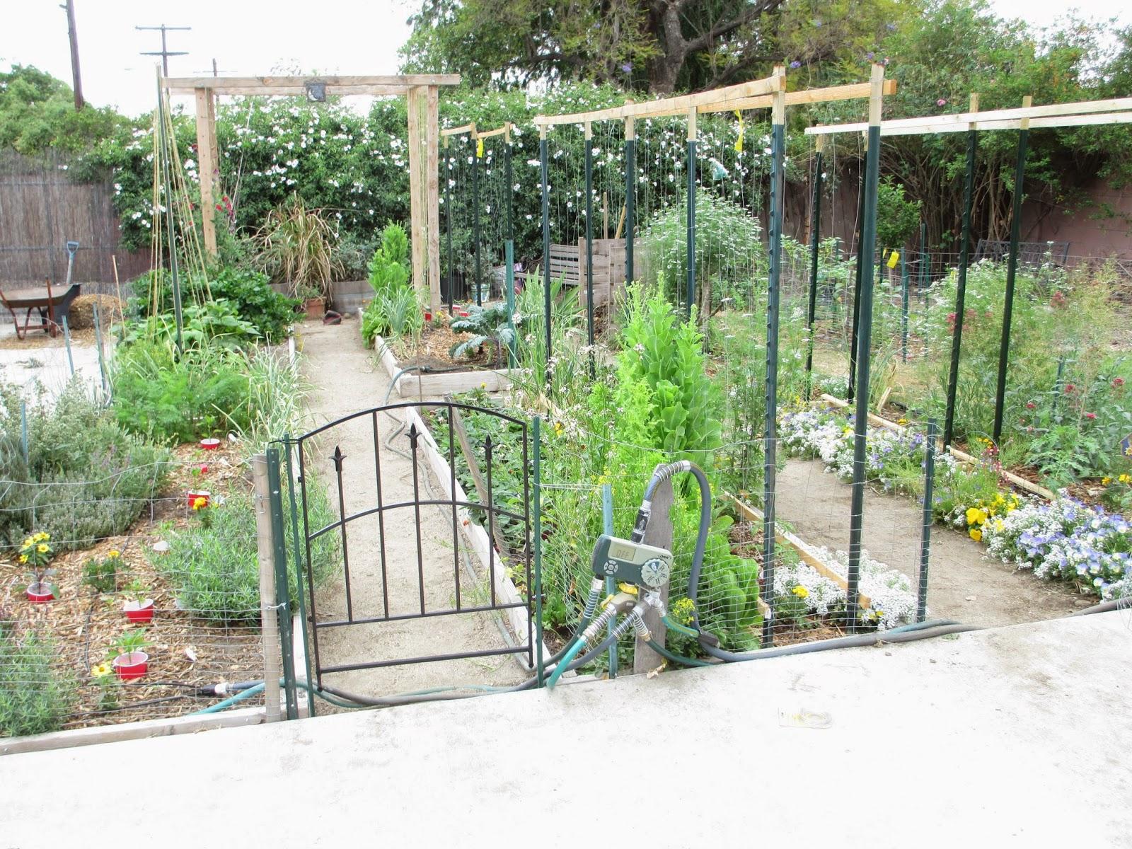 Merveilleux Simple Garden Gate