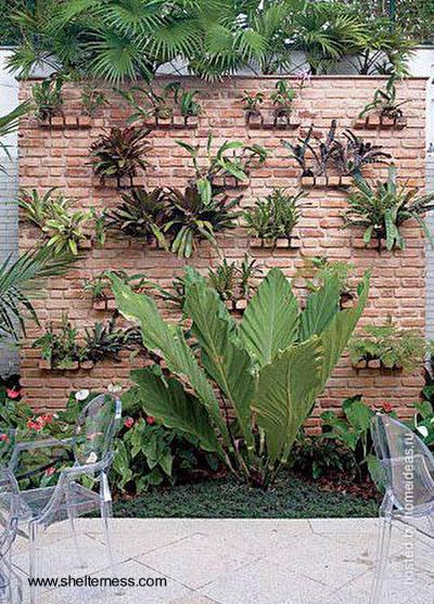 Arquitectura de Casas Jardines pequeos en entradas a edificios