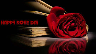 Rose day images, rose day wallpapers, rose day sms, rose day hd wallpapers, rose day 2016, rose day pics