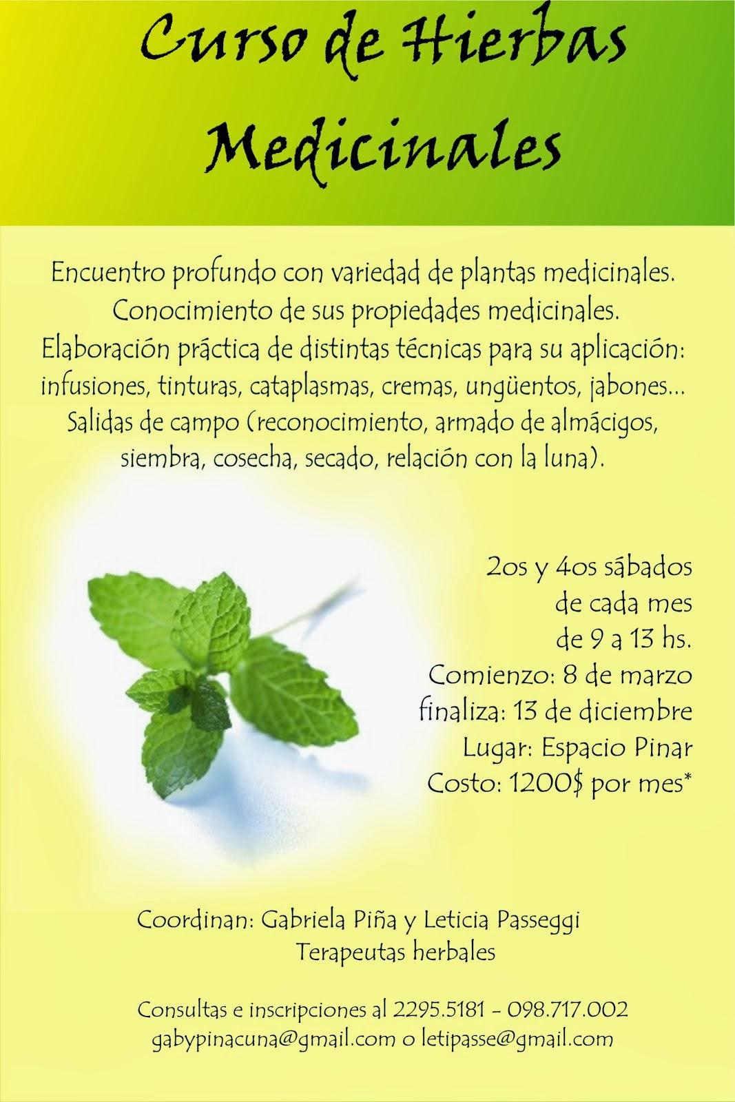 Curso de Hierbas Medicinales