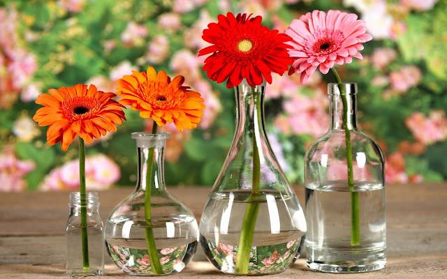 bloemen vaas achtergrond