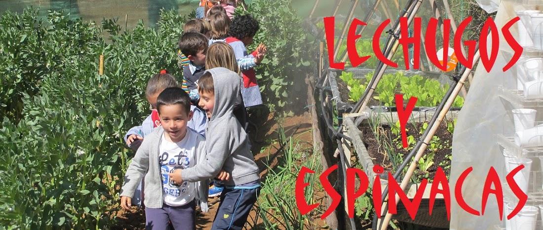 Lechugos y Espinacas