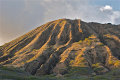 Kohelepelepe (Koko Crater)