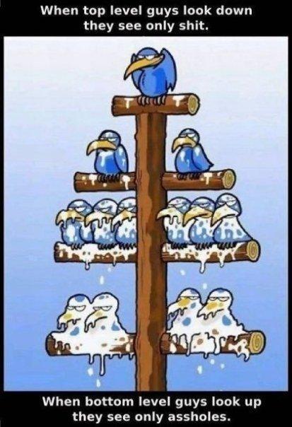 Un-Happy Management Workers