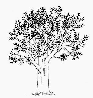 Tips dan contoh Menggambar Pohon nangka pohon jambu pohon mangga dalam Soal Psikotes