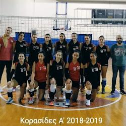 ΚΟΡΑΣΙΔΕΣ Α' 2018-19