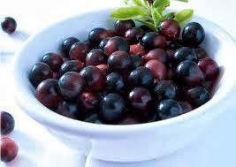 توت الاساي ,فاكهه برازليه ,فاكهه تشبه العنب, حبوب الاساي  ,http://www.sihati.com/2013/10/Benefits-of-Fruit-Tut-Asay.html