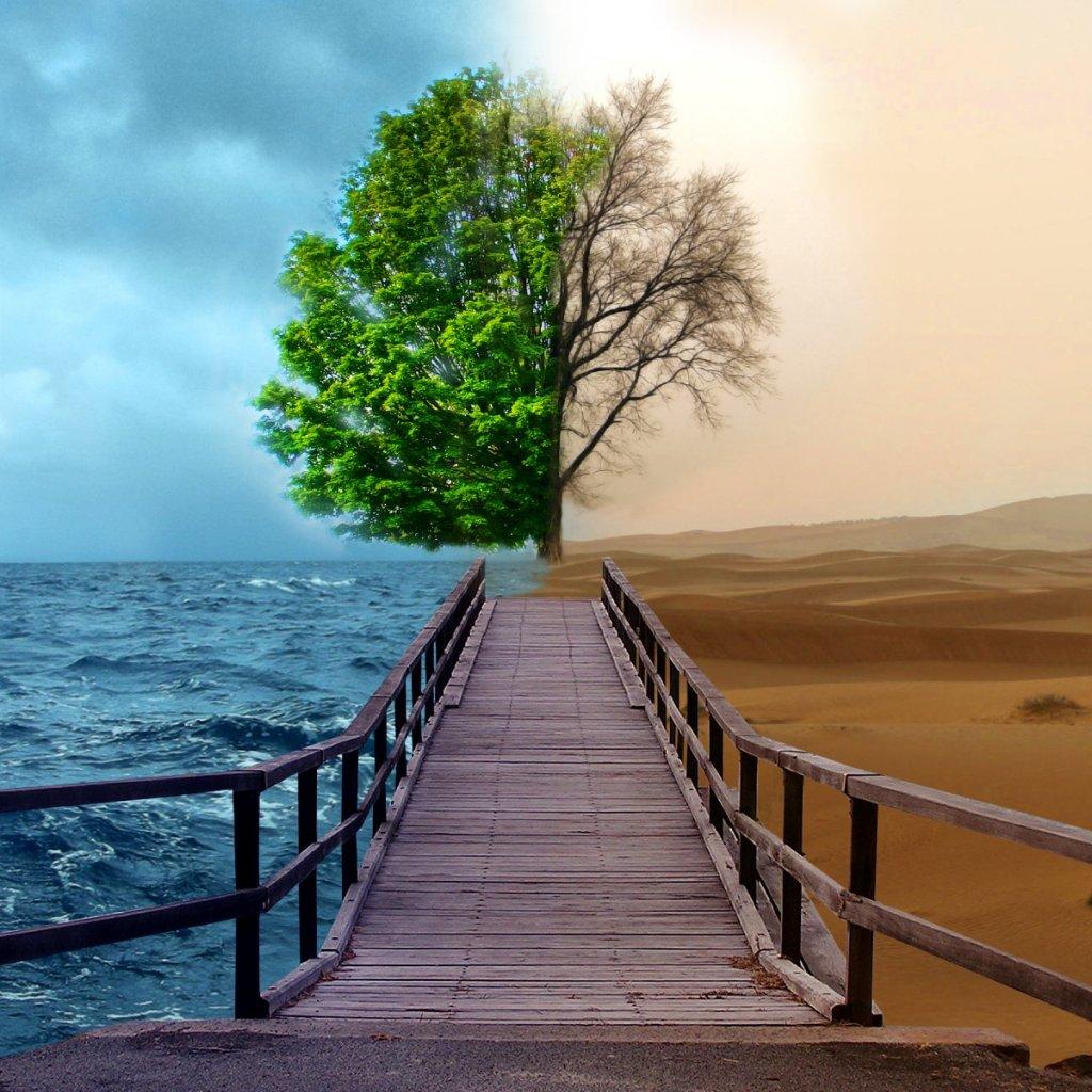 http://4.bp.blogspot.com/-Ha2lodwl7zM/TmUCsKQh3kI/AAAAAAAAAvs/ANjBngdi0o8/s1600/Nature-iPad-Wallpapers-.jpg