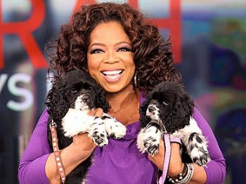 06-52279Urban-Review-Celebrity-Dogs-Opra