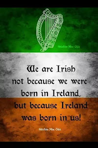 I Have Irish Ancestry and Proud of it!