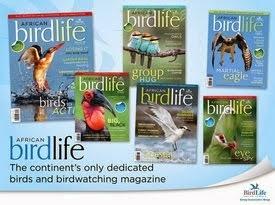 African Birdlife Magazine