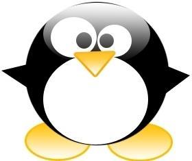 Pingüino gordo