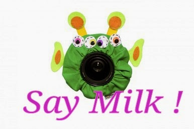 Say Milk ! blog hop