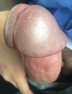 Nude Babes - sexygirl-image_4-746875.jpeg