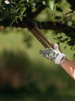 podando árbol