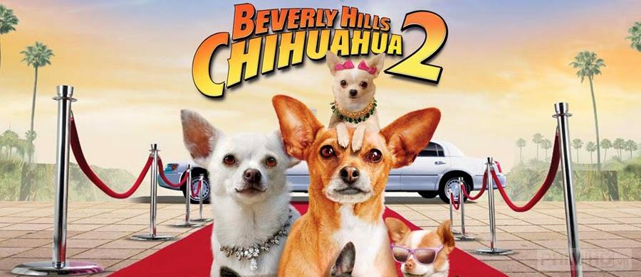 Nữ minh tinh và chàng hoàng tử 2 - Beverly Hills Chihuahua 2  - 2011