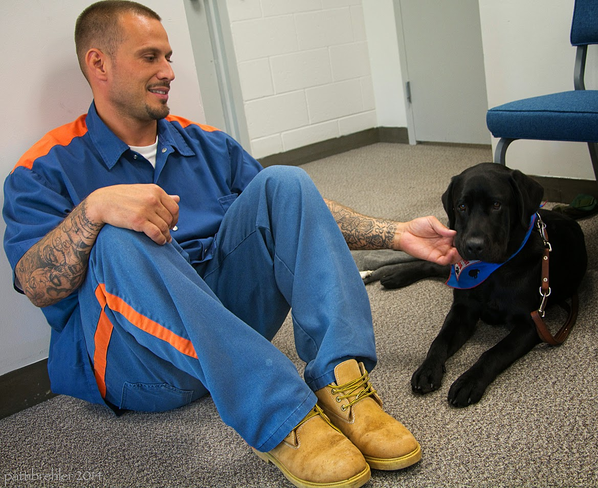 A man dressed in the blue prison uniform and brown boots is sitting on a carpeted floor and leaning against a wall. He is reaching with his left hand to a young black lab, which is lying on the floor on the right. The man's right hand is resting on his right knee. The man is looking at the dog with a smile on his face and love in his eyes. The dog is facing the camera and is wearing a blue bandana. There is a blue chair behind the dog.