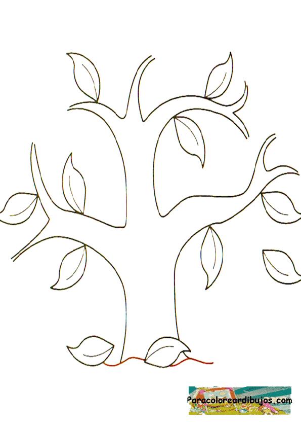 arbol de otoño para colorear