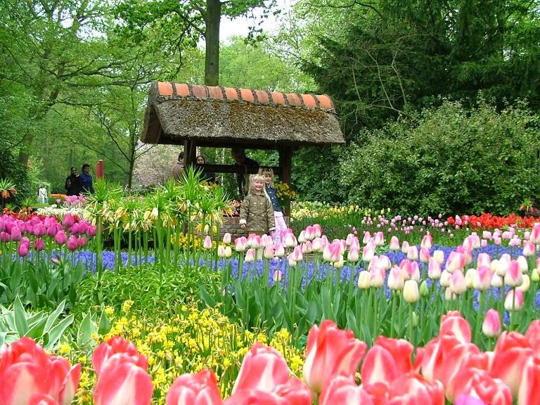 đà lạt thành phố ngàn hoa