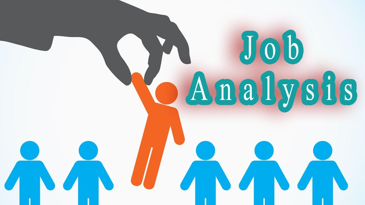 iam here to studyy job analysis job description job analysis process job description process mba notes