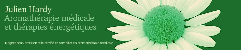 Julien Hardy - Aromathérapie médicale et soins énergétiques