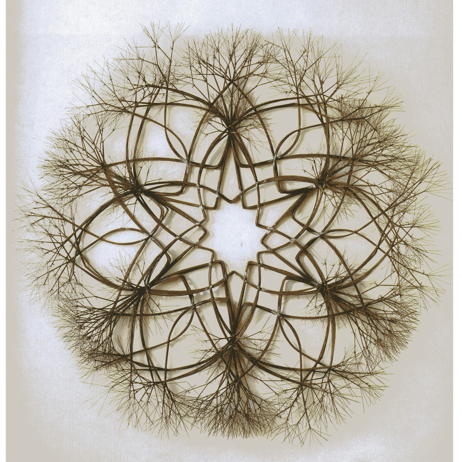 California Fibers Blog: In Remembrance of Artist Ruth Asawa