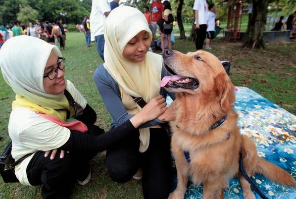 Kempen sentuh anjing dan ulamak bagai anjing - Dr Asri