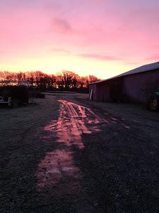 En smuk, kold januarmorgen