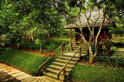 Temu Kencono, Kebun Durian dan Wisata Agro