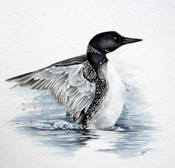 Loon painting - photo#11