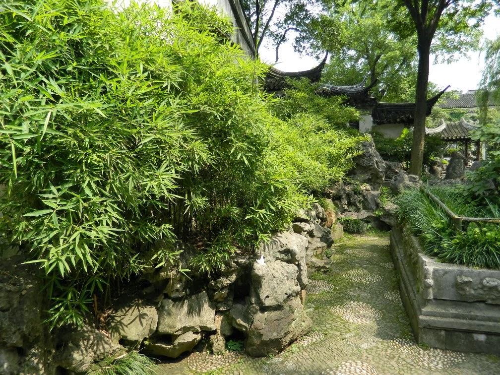 Lingering Garden Suzhou bamboo path by garden muses-Toronto gardening blog