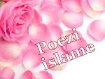 Poezi Islame