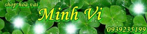 SHOP HOA VẢI MINH VI