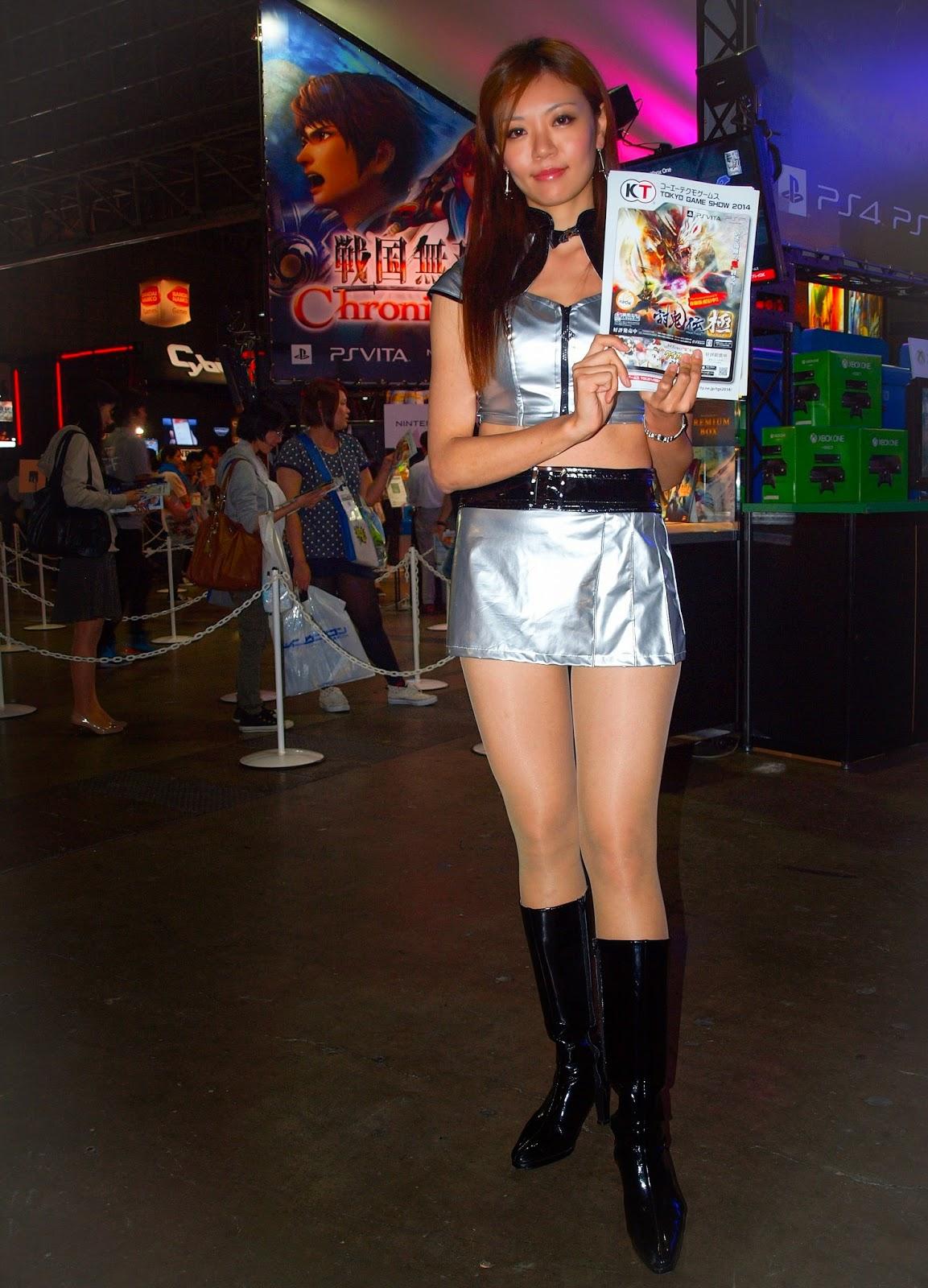Tecmo Koei model