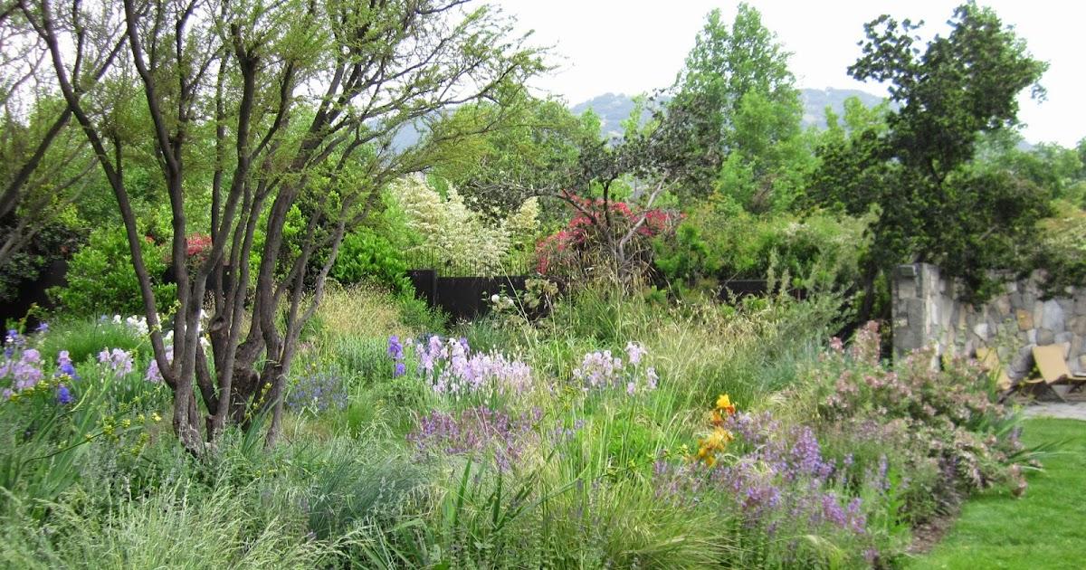 Paisajismo en chile dominio de lo silvestre for Estudiar jardineria
