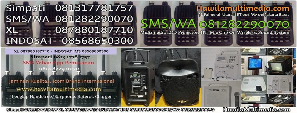 Sewa Mic Wireless Dan Speaker Portable Wireless Jakarta