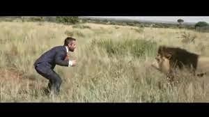 VIDEO. Il joue au foot avec trois lions