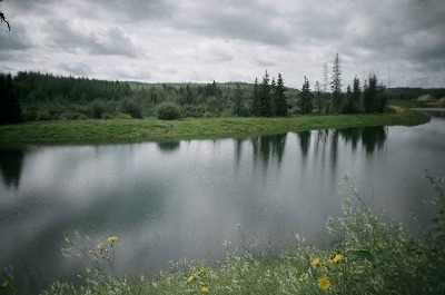 danau dikencingi maskolis