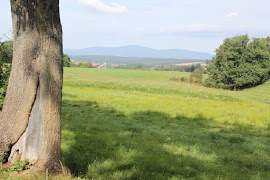 De Harz vanuit de koets