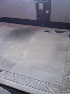 tapijt reinigen rotterdam