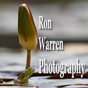 Ron Warren Photography