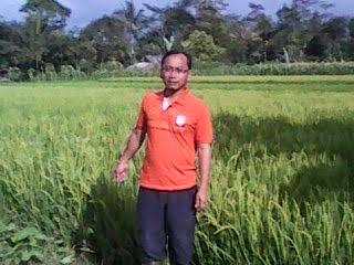 Caleg Dapil V Kabupaten Bogor