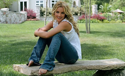 Britney Spears Hd Wallpapers 2013