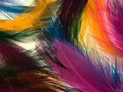 ganchos cabelo penas