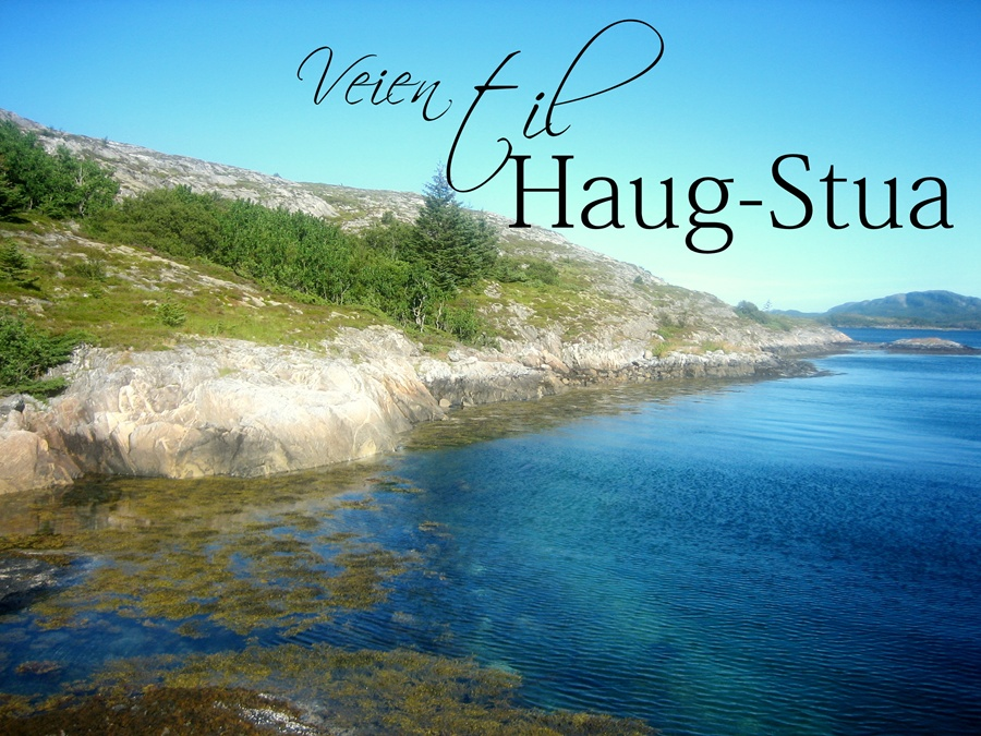 Haug-stua
