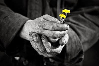 Que bela imagem, linda de tão simples e humana. Cativante