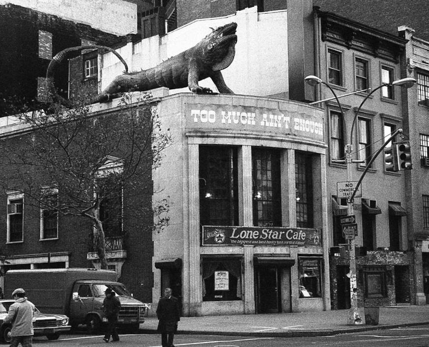 Cafe Iguana New York