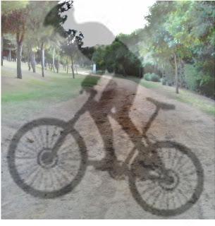 Reglas del ciclista