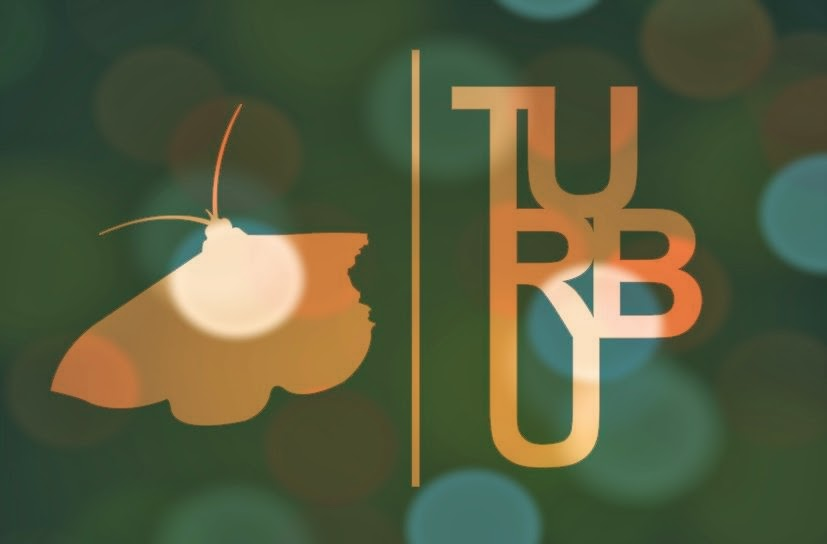 Turbu Company