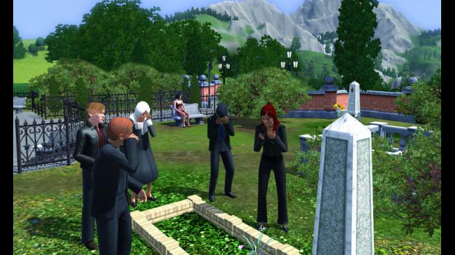 The installed and activated full version of The Sims 3 is assuming.